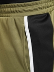 Puma Iconic MCS 8` Shorts Burnt Olive image number 3