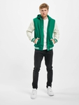 Urban Classics Hooded Oldschool College Jacket Green/White image number 3