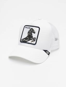 Goorin Bros. Stallion Trucker Cap White