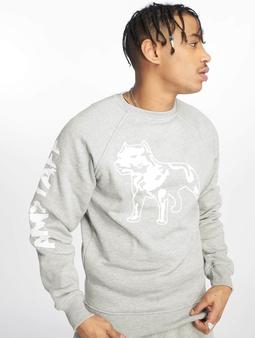 Amstaff Logo Sweatshirt