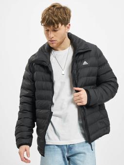 Adidas Originals Syn Fill Jacket
