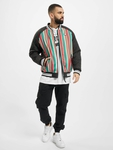 Southpole Stripe College College Jackets image number 5